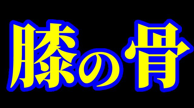 「膝の骨」文字デザインイラスト!無料ダウンロード素材