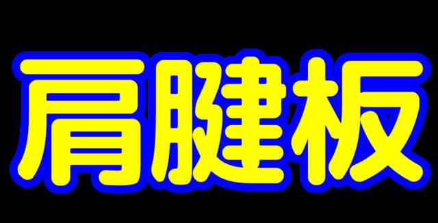 「肩腱板」文字デザインイラスト!無料ダウンロード素材