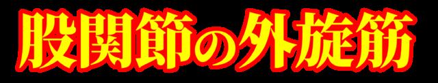 「股関節の外旋筋」文字デザインイラスト!無料ダウンロード素材