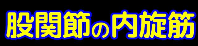 「股関節の内旋筋」文字デザインイラスト!無料ダウンロード素材